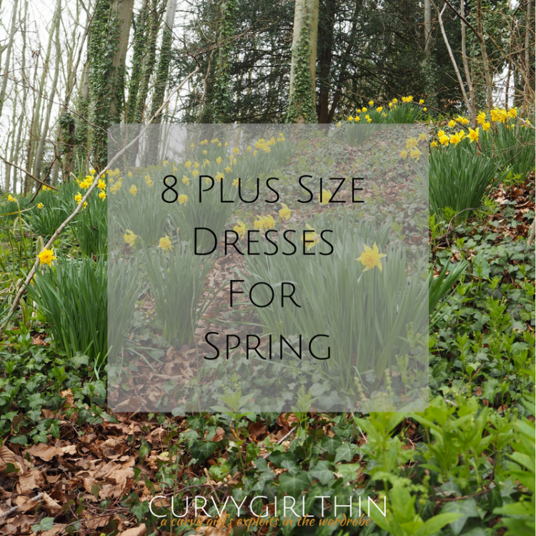 8 Plus Size Dresses for Spring