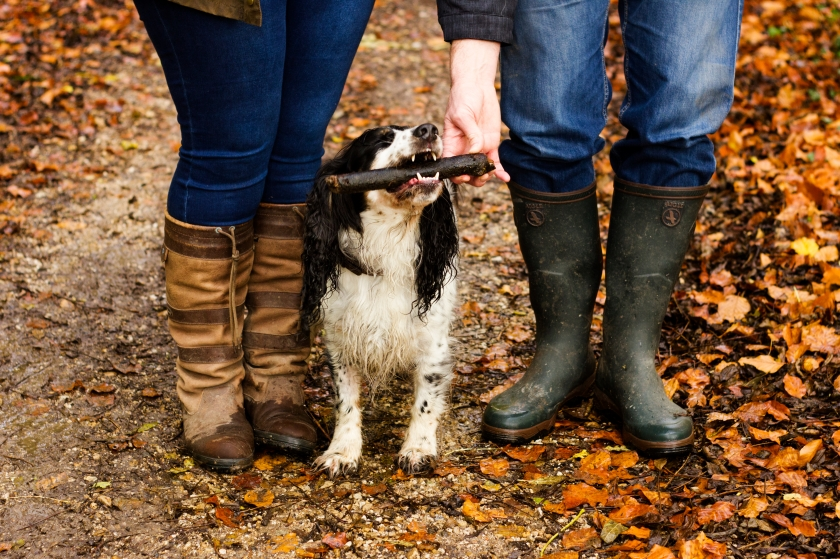 Country style: Country Wellies and a Working Cocker